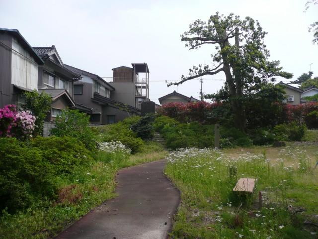 A町図書館庭園